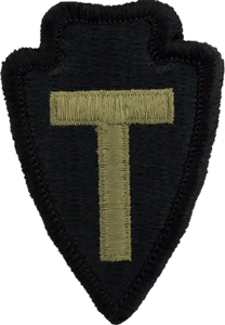 36th Infantry Division OCP Unit Patch