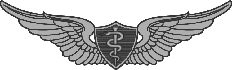 Army Flight Surgeon Wings (Astronaut option available)